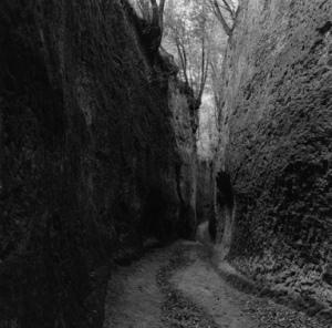 labyrinthis_ii